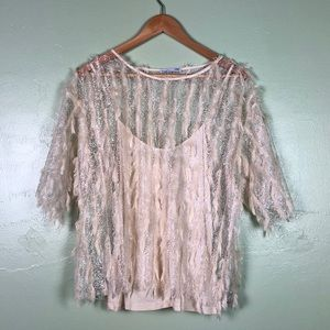 Zara W&B Collection Beige Sheer Feather Lace Top